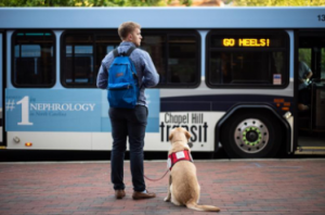 Man waits with Assistance Animal (Dog) for the bus